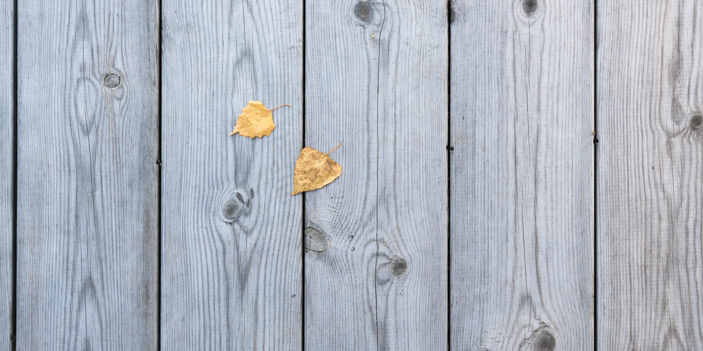 Heartwood decking with two leaves